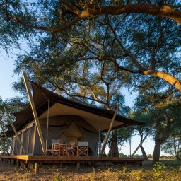 Zimbabwe-Mana Pools-Ruckomechi Camp (4)