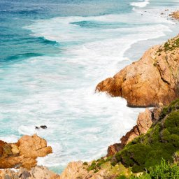 Zuid-Afrika-hoogtepunt-westkaap-overberg-wetu