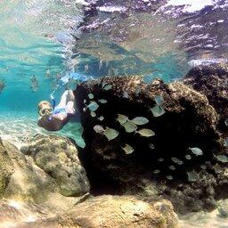 Zuid-Afrika-iSimangaliso-Wetland-thonga-beach-lodge-snorkelen