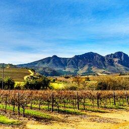 Zuid-Afrika-Stellenbosch-hoogtepunt