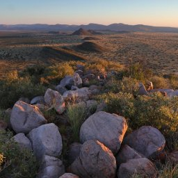 Zuid-Afrika-Tswalu-Kalahari-streek-hotel-Motse-wetu-8