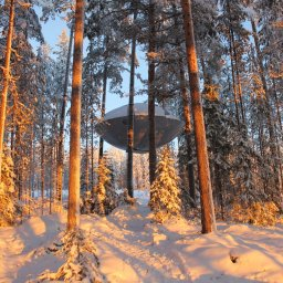Zweden-Lapland-Harads-treehotel-johan-jansson-ufoJPG