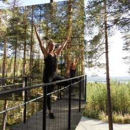 Zweden-Lapland-Harads-treehotel-yoga