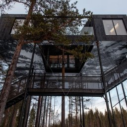 Zweden-Lapland-Harads-Treehotel-zomer-7th-room